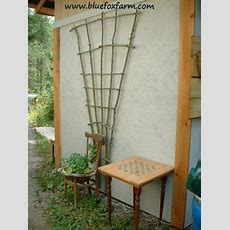 Twig Trellis  Build A Dramatic Focal Point To Decorate