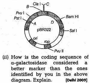 Important Questions For Cbse Class 12 Biology Principles