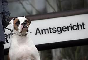 Vermieter Verbietet Hund : risiko geh rt zum gesch ft welche rechte haben vermieter ~ Lizthompson.info Haus und Dekorationen