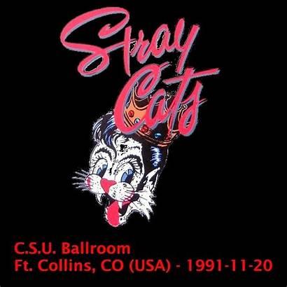 Stray 1991 Ballroom Collins Cats Cat Csu