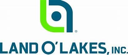 Lakes Land Inc Company Olakes Logos Cesco