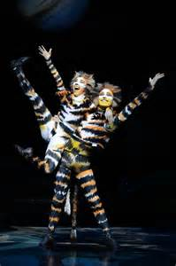 cats the musical the show cats the musical