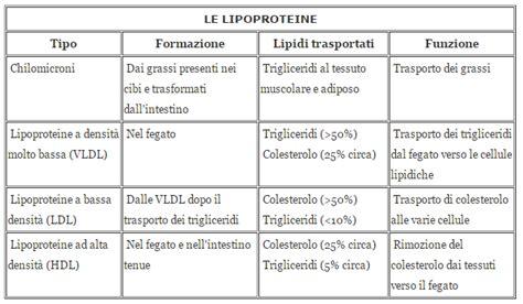 colesterolo alimenti da evitare e quelli permessi cibi da evitare per il colesterolo alto tabella degli