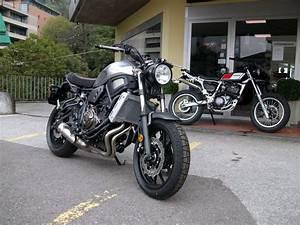 Yamaha Xsr 700 Occasion : moto occasions acheter yamaha xsr 700 abs sciaroni motoservice minusio zeile 3 ~ Medecine-chirurgie-esthetiques.com Avis de Voitures