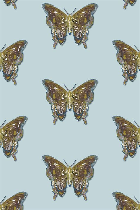 timorous beasties wallcoverings butterfly wallpaper