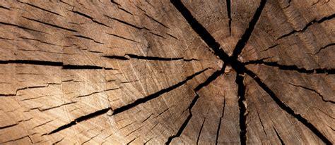 industrial adhesives wood working adhesive
