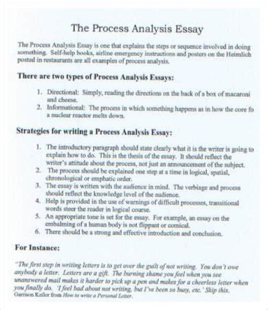 essay english example evaluation