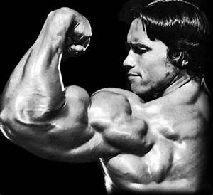 Interesting Perceptions: Arnold Schwarzenegger Quotes
