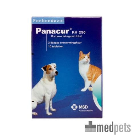 panacur breitband wurmkur fuer hunde katzen
