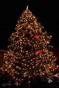 Weihnachtsbaum Entsorgen Berlin : 40 jahre spandauer weihnachtsmarkt unterwegs in spandau ~ Lizthompson.info Haus und Dekorationen