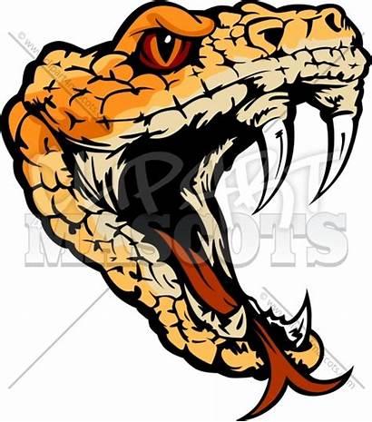 Snake Head Viper Clip Clipart Vector Rattle