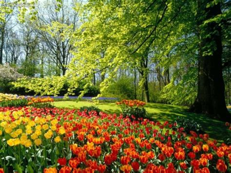 Gartendeko Welt by Bunte Gartengestaltung Und Gartendeko Der Gr 246 223 Te Garten