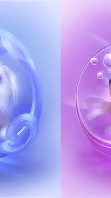 cute animated moving wallpapers  desktop design ideas