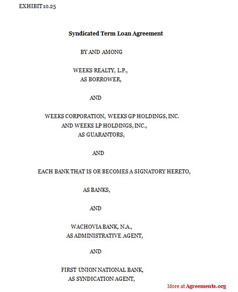 syndicated term loan agreement template