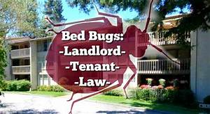 Important bed bug law for california landlords and tenants for Bed bug lawyer