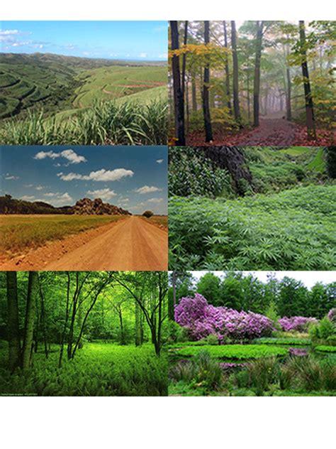 si鑒e habitat hábitat