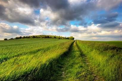 Field Paddy Nature Grass Wallpapers Desktop Road
