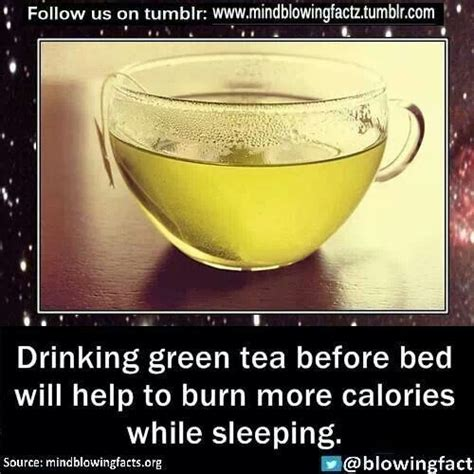 9966 best tea to drink before bed 17 best images about 20 lb weight loss 2014 on