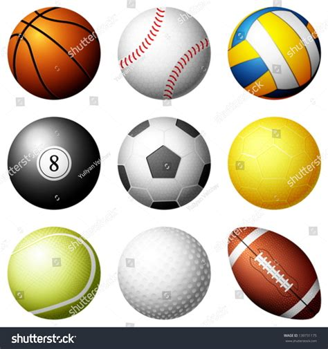 Balls Images White Background by Sport Balls On White Background Vector Stock Vector