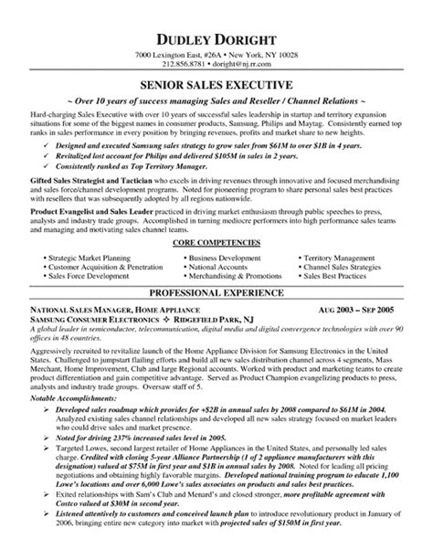 Sle Of A Resume Format by Channel Sales Resume Template