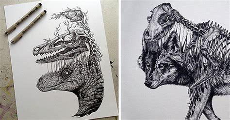 disegni  teschi  scheletri  animali che cercano