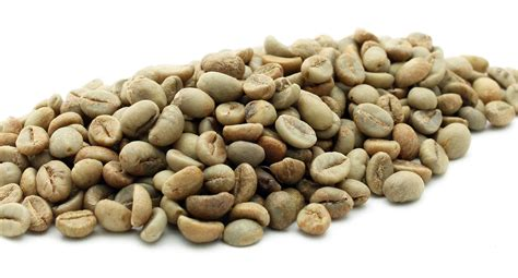 Indian coffee beans fly under the radar. India Robusta Parchment AB - Green coffee beans 1 kg - Crema