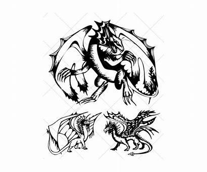 Dragon Sketch Vectors Vector Graphic Dark Realistic