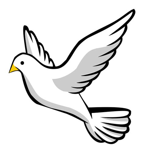 Dove Clipart Dove Clipart For Free And Use In Presentations