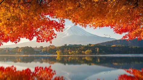 photography japan mount fuji wallpaper