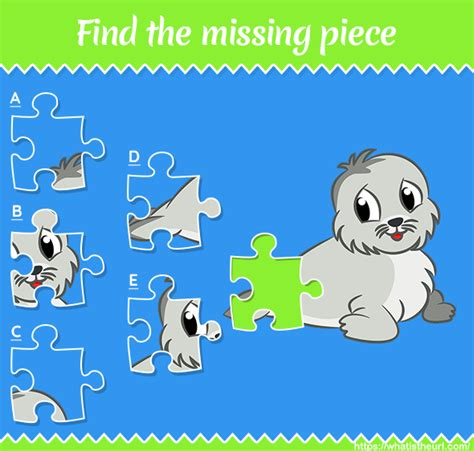 find  missing piece seal picture  home teacher