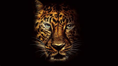 wallpaper jaguar jumanji    jungle