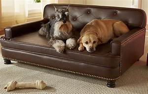 The best large dog beds for big breeds or doggy families for Dog room furniture