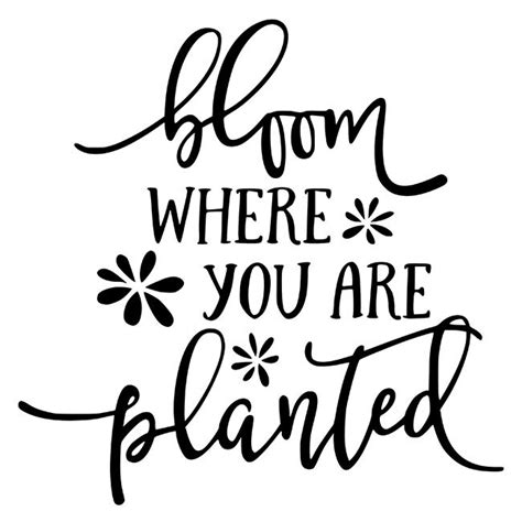 You're currently using an older browser and your experience may not be optimal. Bloom Where You are Planted Stencil - DIY Art in a Box