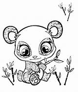 Coloring Pages Animals Panda sketch template