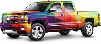 Wraps Vehicle Signs Graphics Lion Everything Between