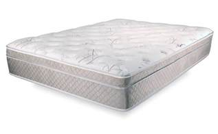 Dreamfoam Bedding Ultimate Dreams by Ultimate Dreams Eurotop Mattress Dreamfoam Bedding