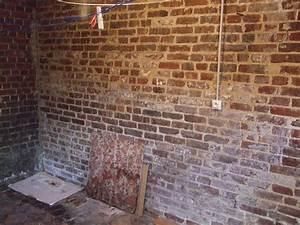 Nettoyer Carrelage Salle De Bain : nettoyer joint salle de bain 4 mur de brique rouge evtod ~ Dailycaller-alerts.com Idées de Décoration