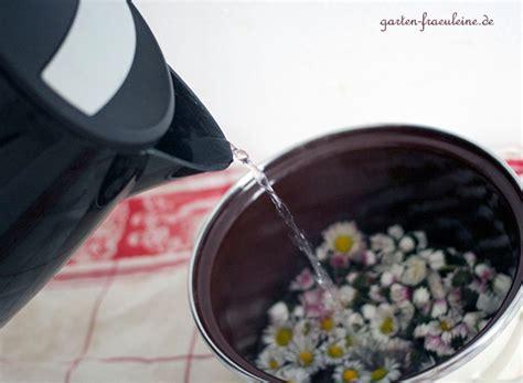 kaffeemaschine kochendes wasser g 228 nsebl 252 mchen sirup garten fraeulein de