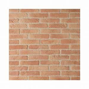Brique Refractaire Pas Cher : ton rouge with parement brique pas cher ~ Dallasstarsshop.com Idées de Décoration