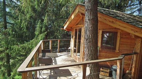 chambre d hotes dans les arbres st jean d aulps la cabane dans les arbres g 238 te chambre