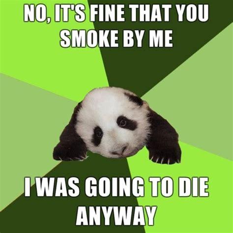 Sneezing Panda Meme - the gallery for gt panda memes tumblr
