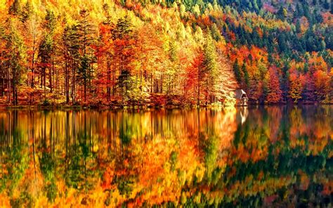 Autumn 4k Uhd Wallpapers by 4k Autumn Wallpapers High Quality Free