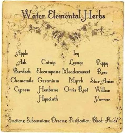 water elemental herbs printable spell page witches