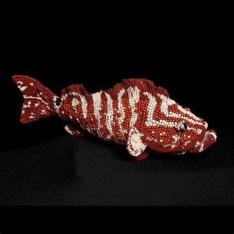 nassau grouper harry
