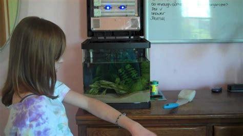how to clean a fish tank how to clean a fish tank
