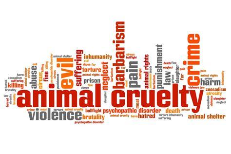 animal abuse statistics    shock