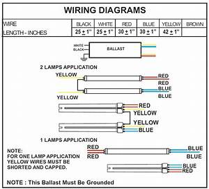 2 Ballast Wiring Diagram Schematic 3828 Julialik Es