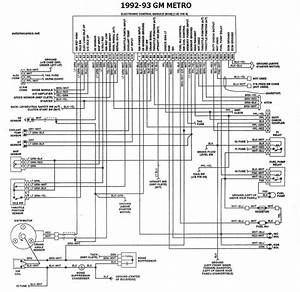 Geo Prizm 91 Ecu Diagram