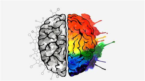 human brain behaves