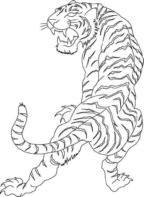 tiger  drawing  tattoo pictures tattoo design